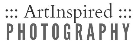 AIP logo 0515